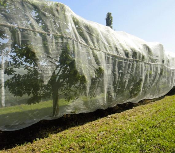 Alt'Droso au mètre (Filet Anti-Insecte)
