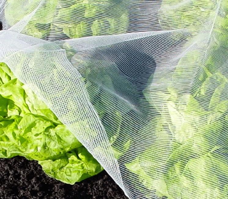 Bioclimat (Filet Anti-Insecte)