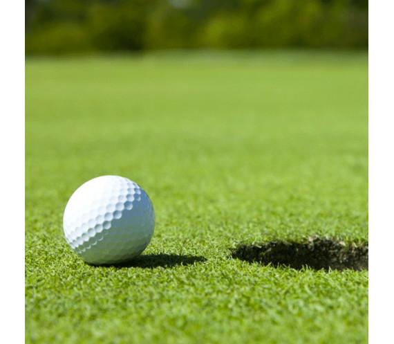 Gazon synthétique green de golf  10mm