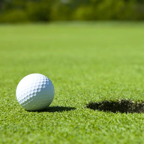gazon synth tique pour la pratique du putting en golf. Black Bedroom Furniture Sets. Home Design Ideas