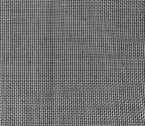 filet anti insecte drosophile alt 39 droso au m tre direct. Black Bedroom Furniture Sets. Home Design Ideas