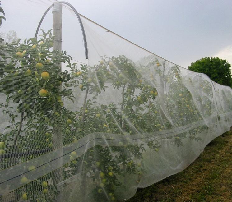 Alt'Carpo au mètre (Filet Anti-Insecte)