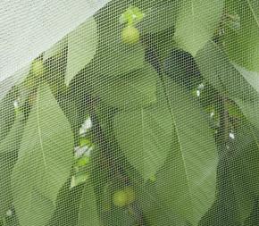 Alt'Mouche au mètre (Filet Anti-Insecte)