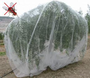 Filet alt'mouche anti insecte