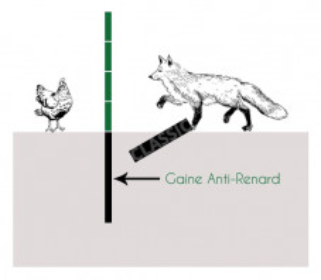 Gaine Anti-renard  - 70cm